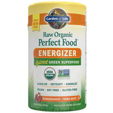 Garden of Life Raw Organic Perfect Food Energizer 9.8 oz