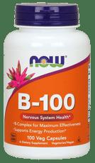 Now Foods ビタミンB-100 100 ベジカプセル