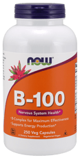 Now Foods B-100 250ベジカプセル